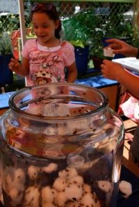 habana-outpost-kids-corner-ladybug-release-1