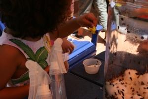 habana-outpost-kids-corner-ladybug-release-3