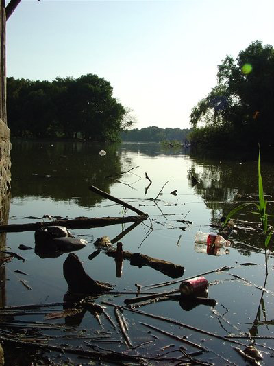 prospect-park-lake-cleanup-